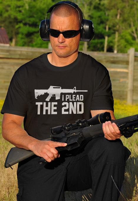 I PLEAD THE 2ND AR-15 Model
