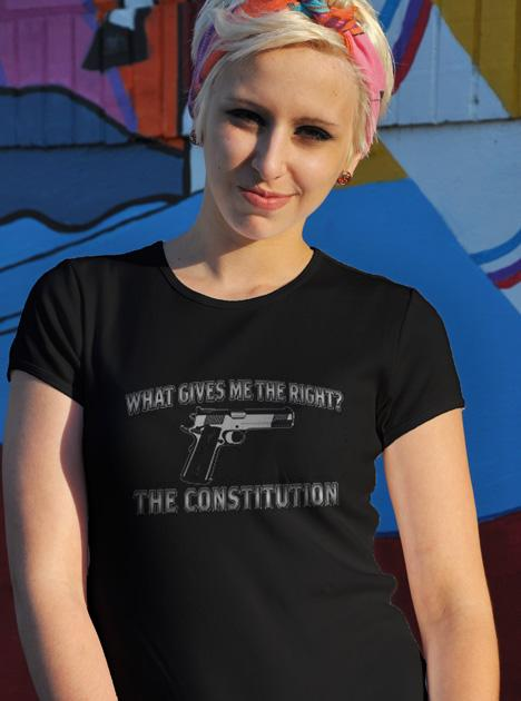 WHAT GIVES ME THE RIGHT THE CONSTITUTION Model